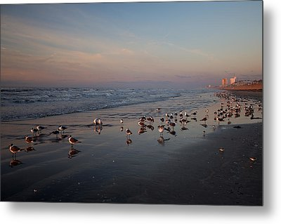 Metal Print featuring the photograph Pink by Sharon Jones