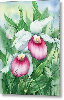 Pink Showy Lady Slippers Metal Print