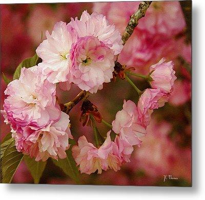 Pink Spring Blossoms Metal Print
