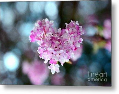 Pink Spring Heart Metal Print by Sabine Jacobs
