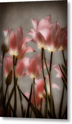 Pink Tulips Glow Metal Print