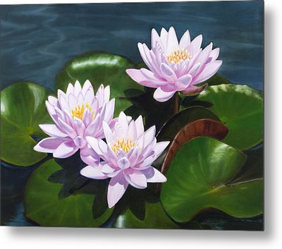 Pink Water Lilies - Oil Painting On Canvas Metal Print