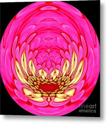 Pink Zinnia Polar Coordinate 2 Metal Print by Rose Santuci-Sofranko