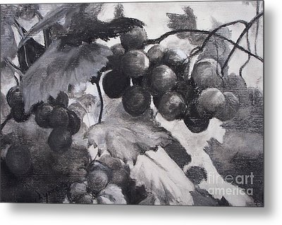 Pinot Noir Metal Print by Mary Lynne Powers