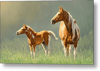 Pinto Mare And Colt Metal Print by Paul Krapf