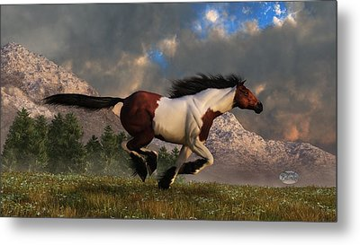 Pinto Mustang Galloping Metal Print by Daniel Eskridge