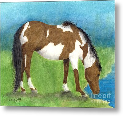 Pinto Mustang Horse Mare Farm Ranch Animal Art Metal Print by Cathy Peek