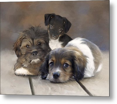 Pinto Pepper And Pickles Metal Print by   DonaRose