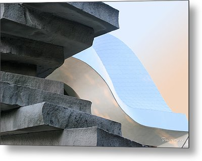 Planes And Curves Metal Print