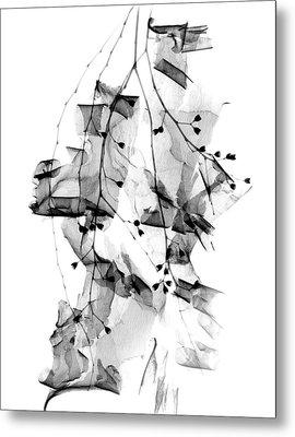 Plant Foliage And Bark Shavings Metal Print by Albert Koetsier X-ray