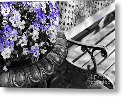 Planter With Pansies And Bench Metal Print