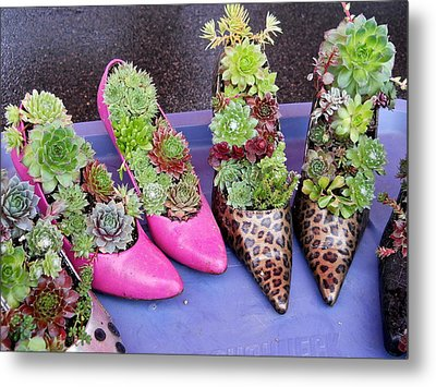 Plants In Pumps Metal Print