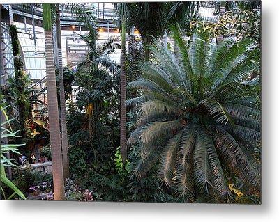 Plants - Us Botanic Garden - 011311 Metal Print by DC Photographer