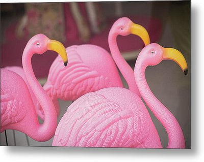 Plastic Pink Flamingos, Charleston Metal Print by Julien Mcroberts