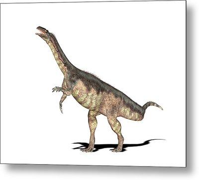 Plateosaurus Dinosaur Metal Print