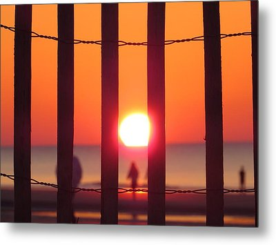 Play Through The Fence Metal Print by Nikki McInnes
