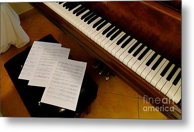 Play Us A Tune Please II Metal Print