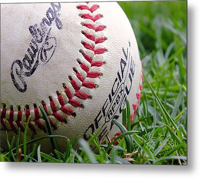 Playing Ball 2 Metal Print by Andy McAfee