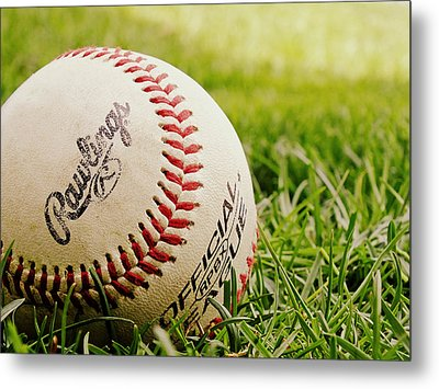 Playing Ball 3 Metal Print by Andy McAfee