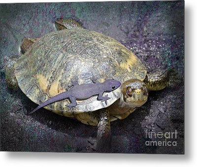 Please Share The Journey Metal Print by Audra D Lemke