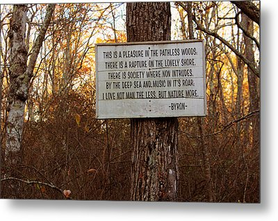 Pleasure In The Pathless Woods Metal Print