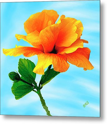 Pleasure - Yellow Double Hibiscus Metal Print by Ben and Raisa Gertsberg