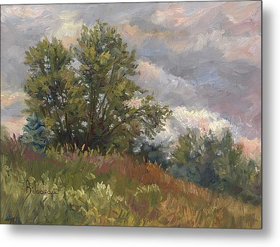 Plein Air - Near The Chicopee River Metal Print by Lucie Bilodeau