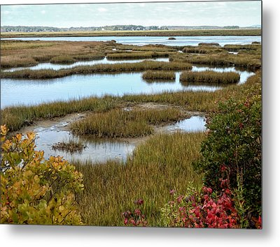Plum Island Marshes In Autumn 2 Metal Print