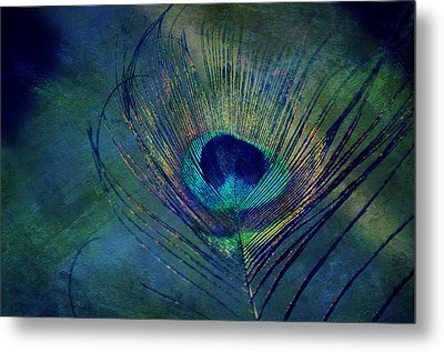 Plume Metal Print by Robin Dickinson