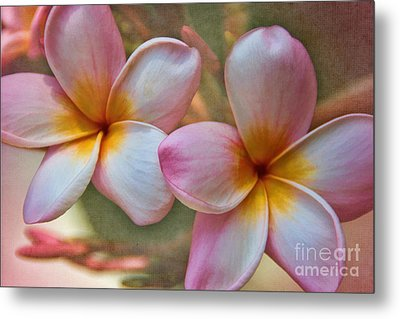 Metal Print featuring the photograph Plumeria Pair by Peggy Hughes