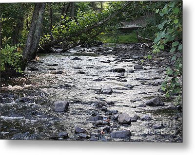 Poconos Gentle Stream Metal Print by John Telfer