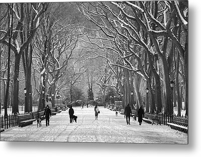 New York City - Poets Walk Winter Metal Print by Dave Beckerman