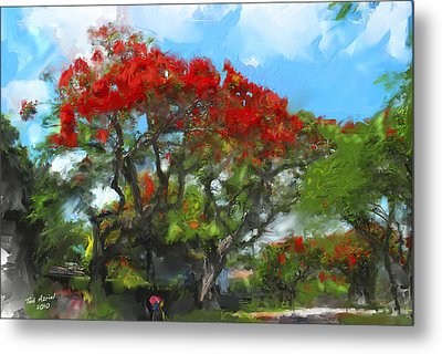 Metal Print featuring the painting Poinciana Trees Of Coral Gables by Ted Azriel