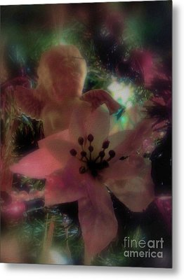 Metal Print featuring the photograph Poinsettia Angel by Roxy Riou