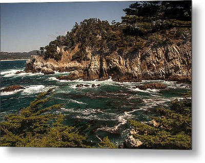 Metal Print featuring the photograph Point Lobos by Lee Kirchhevel