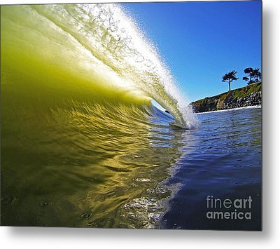 Point Of Contact Metal Print by Paul Topp