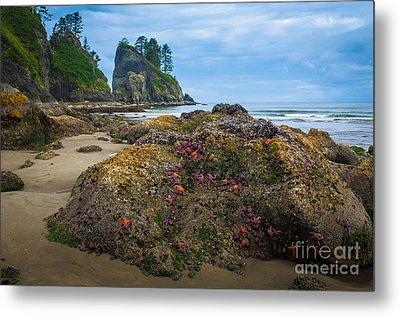 Point Of The Arches Beach Metal Print by Inge Johnsson