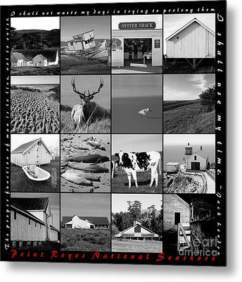 Point Reyes National Seashore 20150102 With Text Bw Metal Print by Wingsdomain Art and Photography