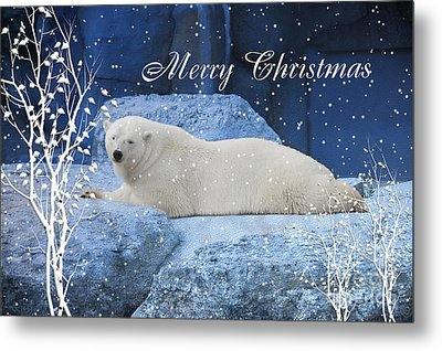 Polar Bear Christmas Greeting Metal Print by Elaine Manley