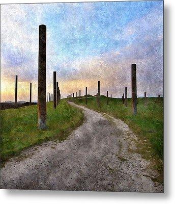 Pole Field Metal Print