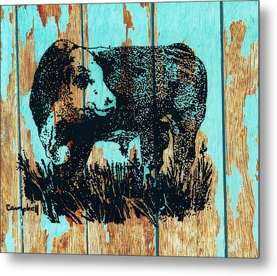 Polled Hereford Bull 23 Metal Print by Larry Campbell