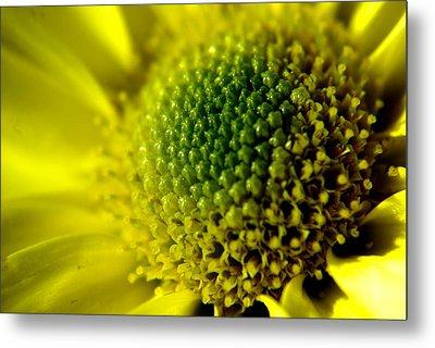 Pollen Factory Metal Print