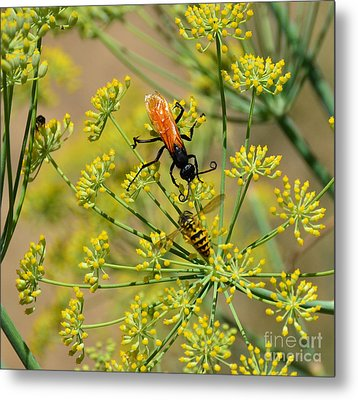 Metal Print featuring the photograph Pollenation Danger by Debby Pueschel