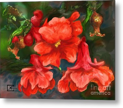 Pomegranate Blooms Floral Painting Metal Print by Judy Filarecki
