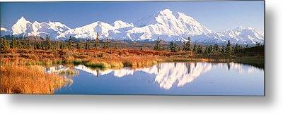 Pond, Alaska Range, Denali National Metal Print