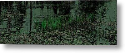 Pond Grasses Panorama Metal Print