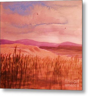 Pond In Drought Metal Print by Suzanne McKay