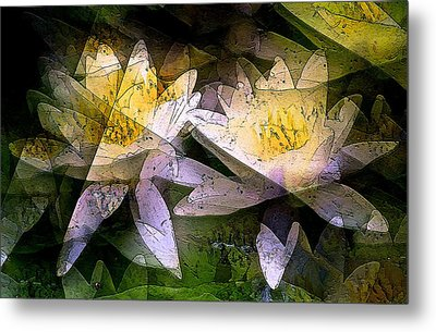 Pond Lily 24 Metal Print by Pamela Cooper