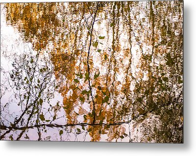 Pond Reflections #3 Metal Print