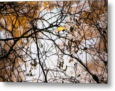 Pond Reflections #7 Metal Print